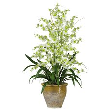 Triple Dancing Lady Silk Orchid Arrangement in Green