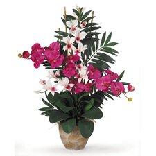 Double Phalaenopsis and Dendrobium Silk Orchid Arrangement in Beauty Pink and White