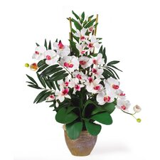 <strong>Nearly Natural</strong> Double Phalaenopsis and Dendrobium Silk Orchid Arrangement in White