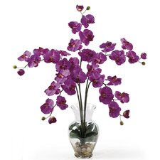 <strong>Nearly Natural</strong> Liquid Illusion Phalaenopsis Silk Orchid Arrangement in Orchid