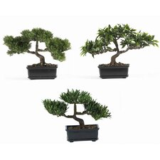 "12"" Silk Bonsai Plant in Green (Set of 3)"