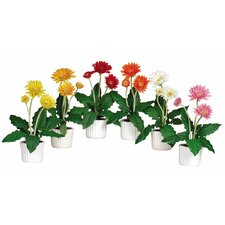 <strong>Nearly Natural</strong> Gerber Daisy Flower with White Vase (Set of 6)