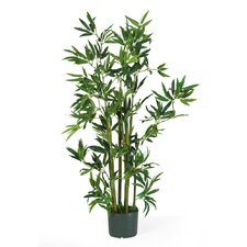 Silk Bamboo Floor Plant in Pot