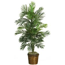 "54"" Silk Areca Palm Tree with Basket in Green"