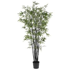 "78"" Silk Black Bamboo Tree in Green"