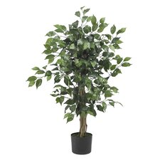 Silk Ficus Tree in Green