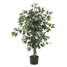 Silk Ficus Tree with Pot