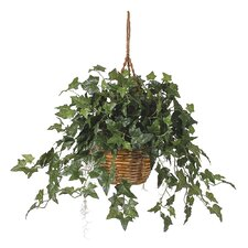 Silk English Ivy Hanging Plant in Basket
