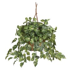 Silk Pothos Hanging Plant in Basket