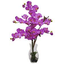 Phalaenopsis with Vase Silk Flower Arrangement in Orchid