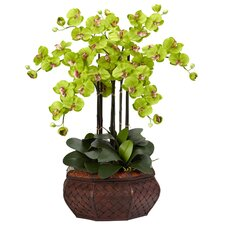 Large Phalaenopsis Silk Flower Arrangement in Green