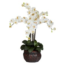 <strong>Nearly Natural</strong> Phalaenopsis with Decorative Vase Silk Flower Arrangement in Cream