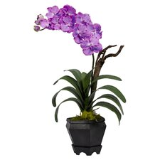 <strong>Nearly Natural</strong> Vanda with Black Hexagon Vase Silk Arrangement in Purple