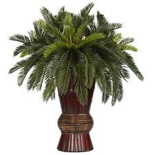 Cycas Bamboo Silk Desk Top Plant in Decorative Vase