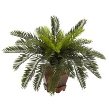Cycas with Hexagon Vase Silk Plant
