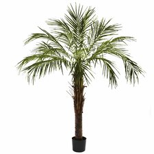 Nearly Natural Robellini Palm Tree in Pot