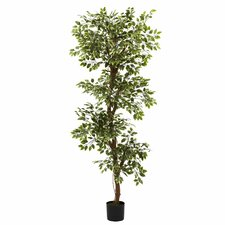 Nearly Natural Variegated Ficus Tree in Pot