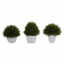 Nearly Natural 3 Piece Mixed Cedar Desk Top Plant Set in Decorative Vases
