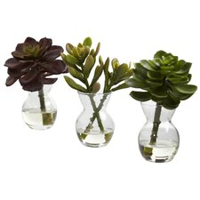 Nearly Natural Succulent Arrangements Desk Top Plant in Decorative Vase (Set of 3)
