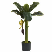 Nearly Natural Banana Tree in Pot