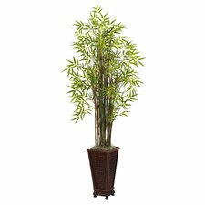 Grass Bamboo Plant with Decorative Planter
