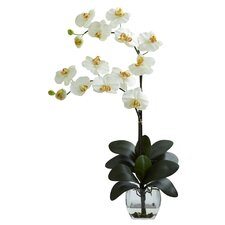<strong>Nearly Natural</strong> Double Phalaenopsis Orchid with Vase Arrangement