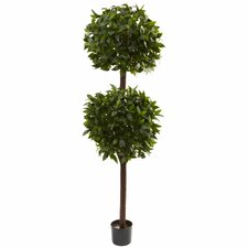 <strong>Nearly Natural</strong> Sweet Bay Double Ball Topiary in Pot
