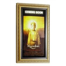 Museum Series Rear Illuminated Poster Case