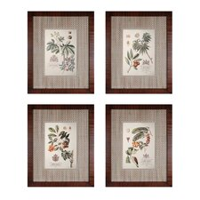 Imperial Foliage 4 Piece Framed Graphic Art Set