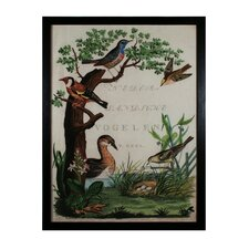 Duck Sanctuary Framed Graphic Art Set