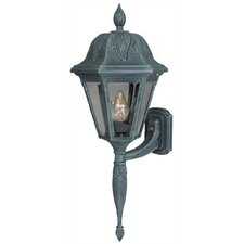 Floral Outdoor Wall Lantern