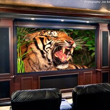 Clarion Radiant Projection Screen
