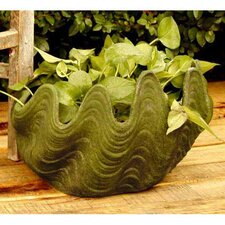 Nori Shell Planter