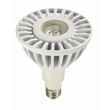 17W (2700K) LED Light Bulb