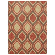 Woodgrain Stylin Ogee Pink Brown Area Rug