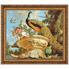 A Peacock on a Decorative Urn by Melchior de Hondecoeter Framed Painting Print