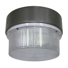 Round Luminaire Outdoor Flush Mount in Bronze