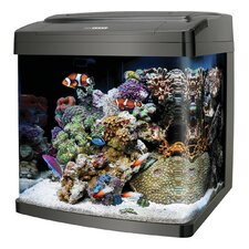 Biocube 14 Gallon Aquarium Kit