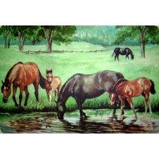 Horse Pond Doormat