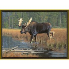 Wildlife Moose Novelty Rug
