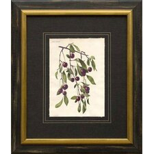 <strong>Phoenix Galleries</strong> Cherries Framed Print