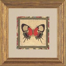 Crackled Butterfly III Framed Print