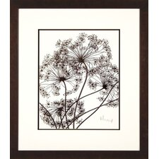 <strong>Phoenix Galleries</strong> Twigs 1 Framed Print