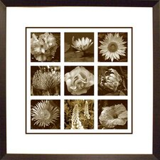 <strong>Phoenix Galleries</strong> Nine Flowers Framed Print