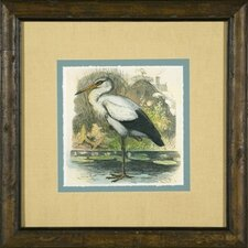 <strong>Phoenix Galleries</strong> Waterbirds 2 Giclee Print