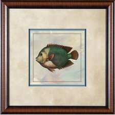 "Tropical Fish 2 Framed Print - 21""x 21"""