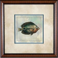 "Tropical Fish 6 Framed Print - 21""x 21"""