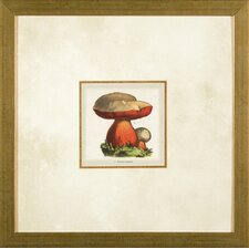 <strong>Phoenix Galleries</strong> Small Mushroom 1 Framed Print
