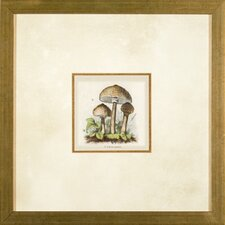 Small Mushrooms 3 Framed Print