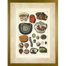 <strong>Phoenix Galleries</strong> Minerals 1 Large Framed Print